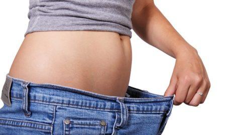 Diet Plans Study